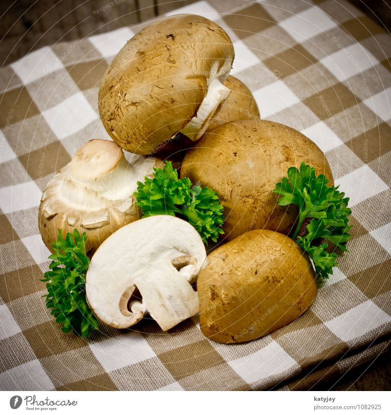 mushrooms Button mushroom Mushroom Brown germlings Healthy Eating Raw Dish Vegetarian diet Ingredients Parsley Herbs and spices Cooking Kitchen Forest plant