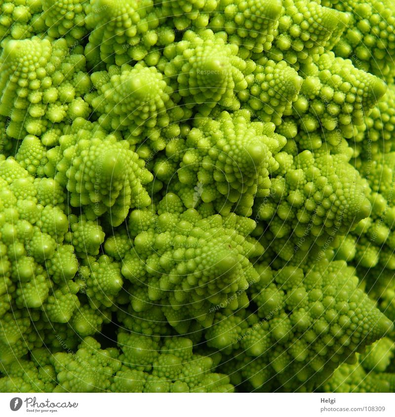 Detail of a Romanesco cabbage Cabbage Cauliflower Broccoli Nutrition Vegetarian diet Vegan diet Plant Healthy Vitamin Food Cooking Tree Delicious Green Chaos