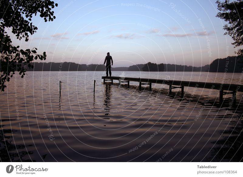 Man Water Calm Forest Lake Waves Fog Peace Meditation Footbridge Pond