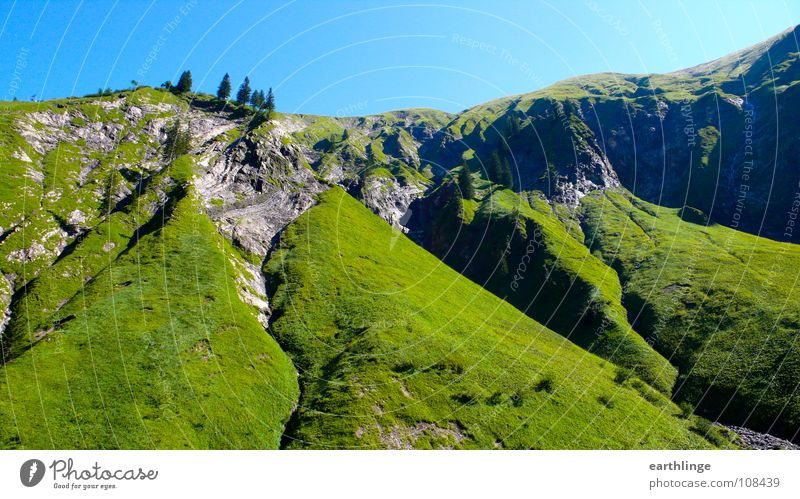Ho-Ho, Ho-High Mountains Fir tree Grass Green Summer Cervice Colour photo Digital photography Landscape format Juicy Contentment Stone Blue Idyll Relaxation