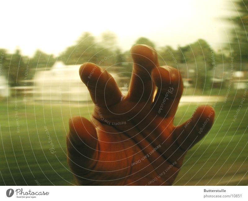 hand Hand Green Human being Movement