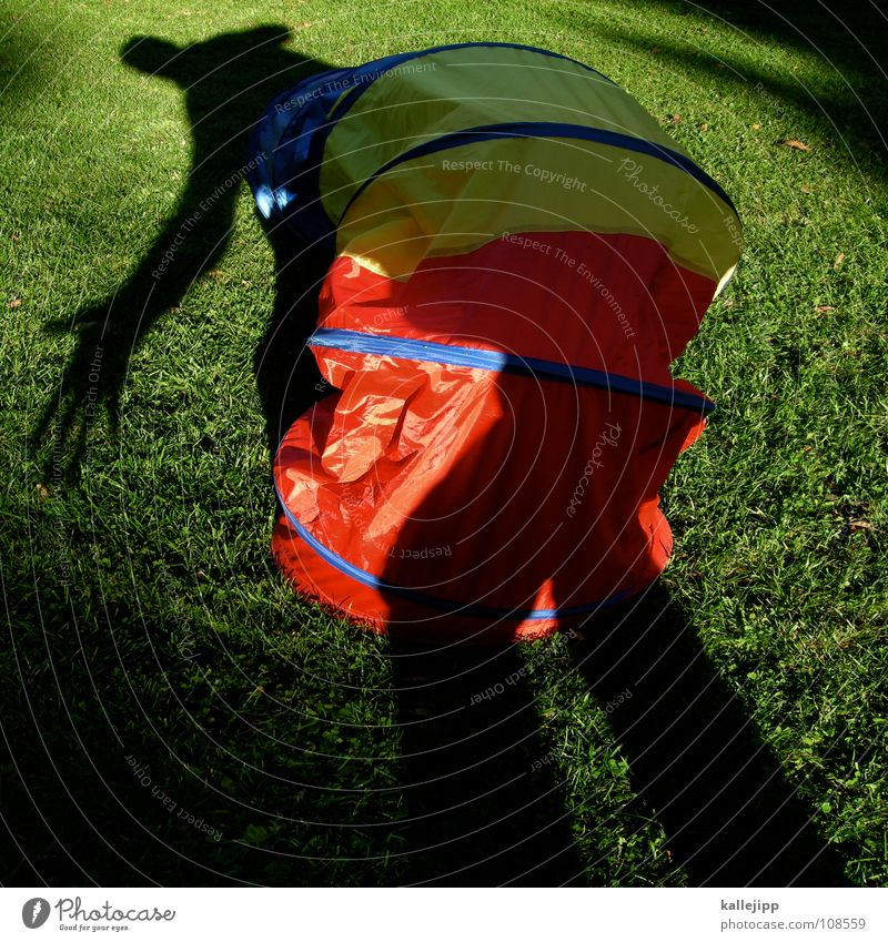 Human being Animal Playing Garden Dream Going Walking Wet Hiking Lie Action Driving Lawn Toys Insect Past