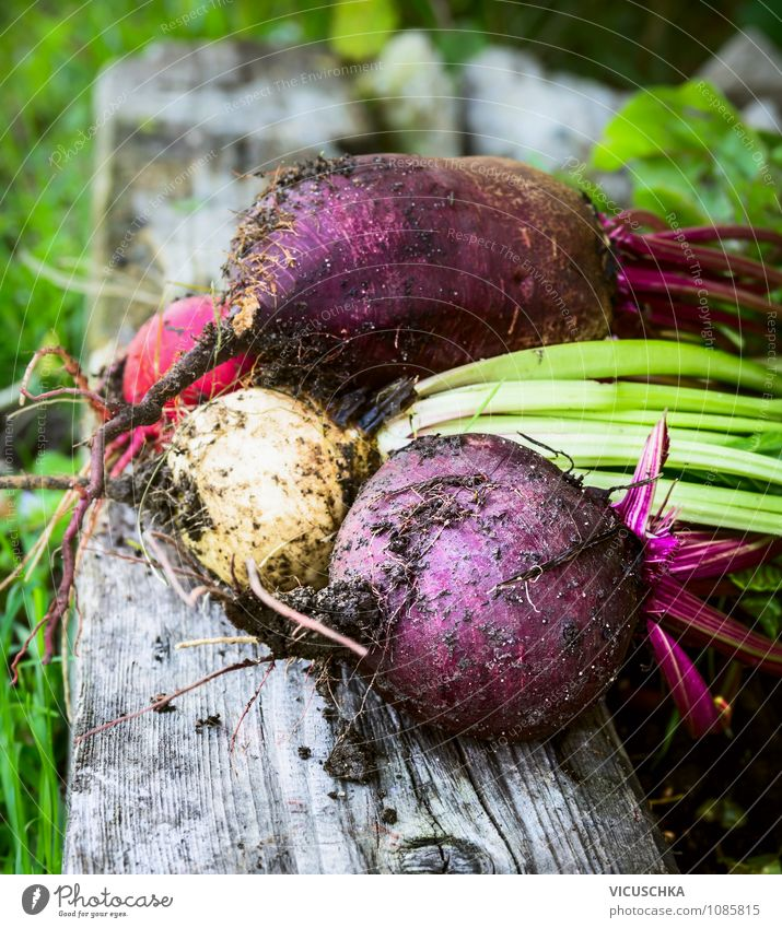 Various beetroot on old wood Food Vegetable Organic produce Vegetarian diet Diet Lifestyle Design Healthy Eating Leisure and hobbies Summer Garden Nature Autumn