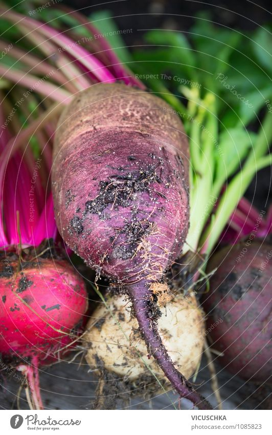 Beetroot Beets Food Vegetable Nutrition Organic produce Vegetarian diet Diet Style Design Healthy Eating Life Garden Nature Garden Bed (Horticulture) red