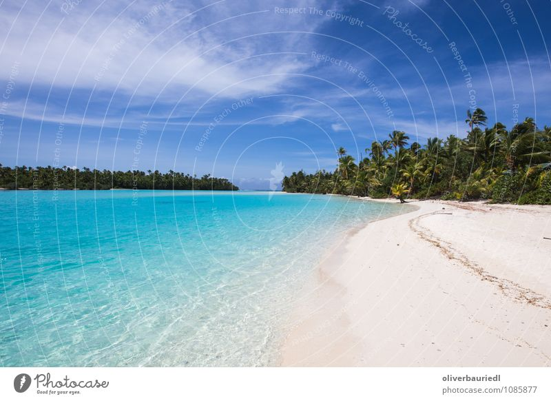 South Pacific Paradise Vacation & Travel Tourism Far-off places Summer vacation Sun Beach Ocean Island Nature Water Beautiful weather Warmth Coast To enjoy