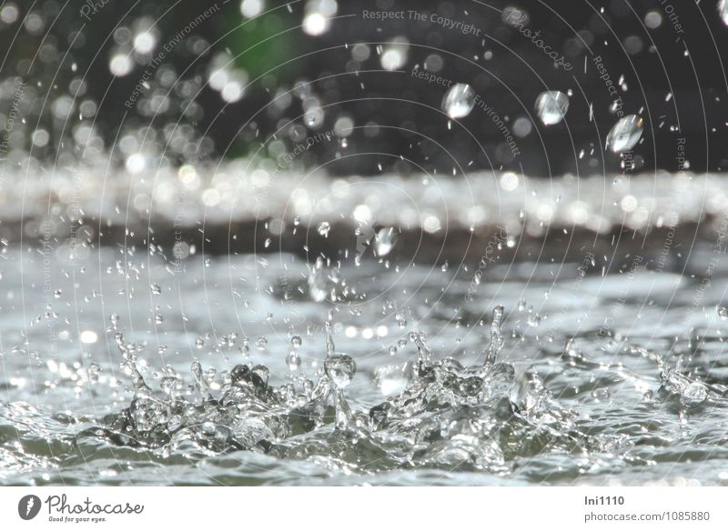 well Water Drops of water Sunlight Summer Garden Park Stone Observe Glittering Looking Fluid Healthy Cold Wet Clean Blue Gray Green Black Silver White