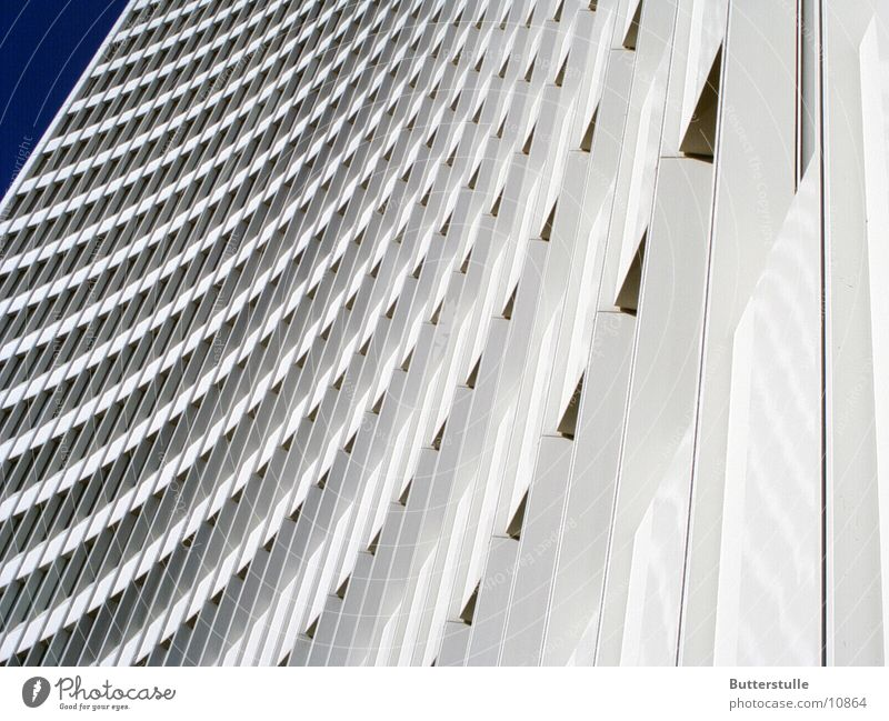 White House (Residential Structure) Architecture High-rise Tall Perspective Distorted