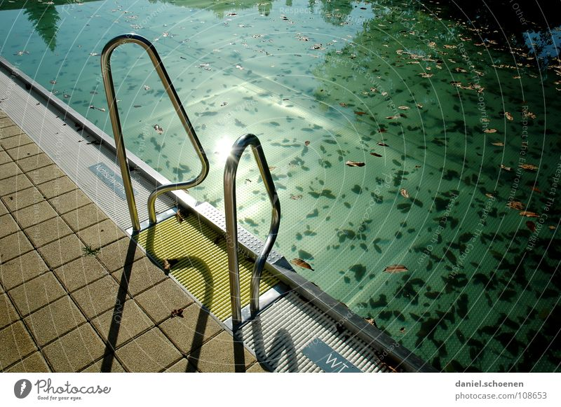 Water Green Blue Leaf Autumn Death Moody Dirty Background picture Empty Stairs Swimming pool End Transience Clarity