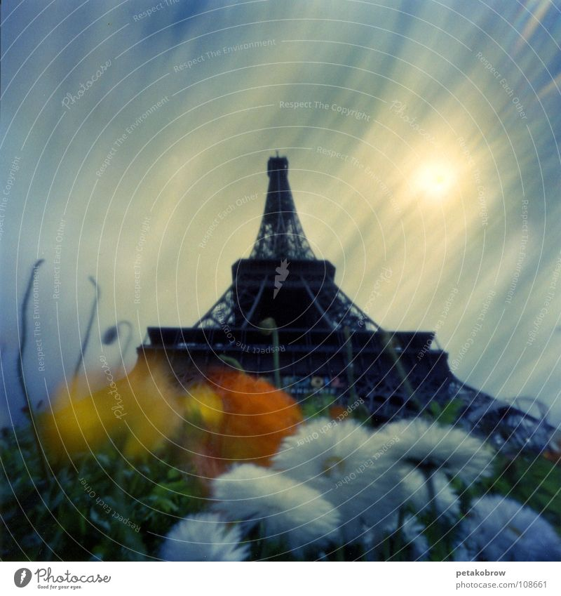Sky Sun Flower Clouds Garden Architecture Tower Paris France Landmark Eiffel Tower