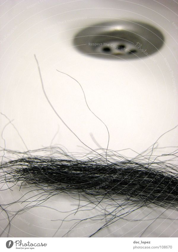 White Black Hair and hairstyles Gastronomy Crockery Curl Hairdresser Disgust Household Drainage Sink Strand of hair