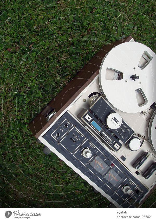 Green Summer Relaxation Joy Meadow Grass Wood Feasts & Celebrations Garden Lie Park Music Speed Beginning To enjoy Technology