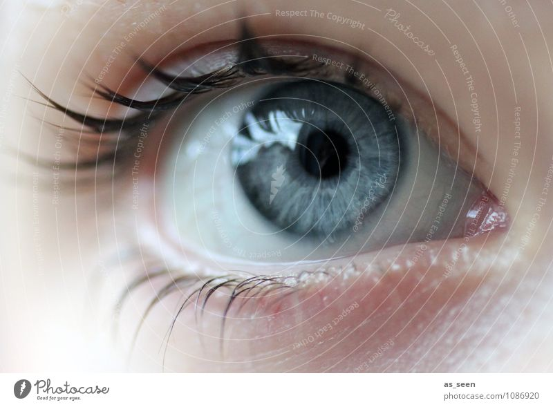 optics Beautiful Health care Wellness Optician Optics Opthalmology Entertainment electronics Advancement Future Information Technology Feminine Eyes Media
