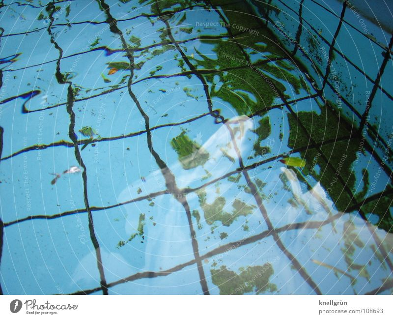 refraction of light Swimming pool Square Algae Green Light Reflection Autumn Water Basin Tile Blue Seam