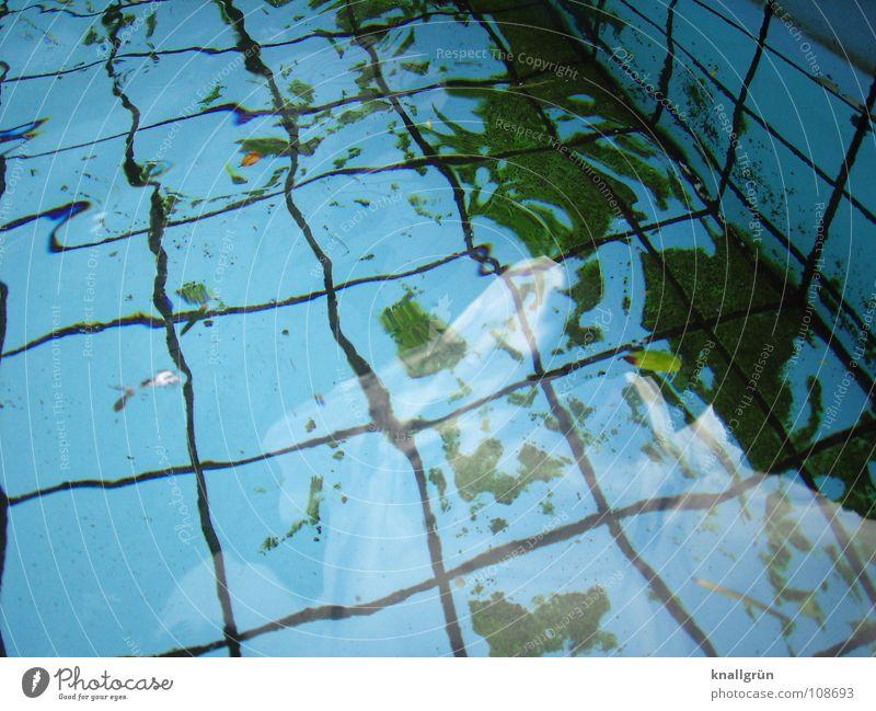 Water Green Blue Autumn Swimming pool Tile Square Seam Basin Algae