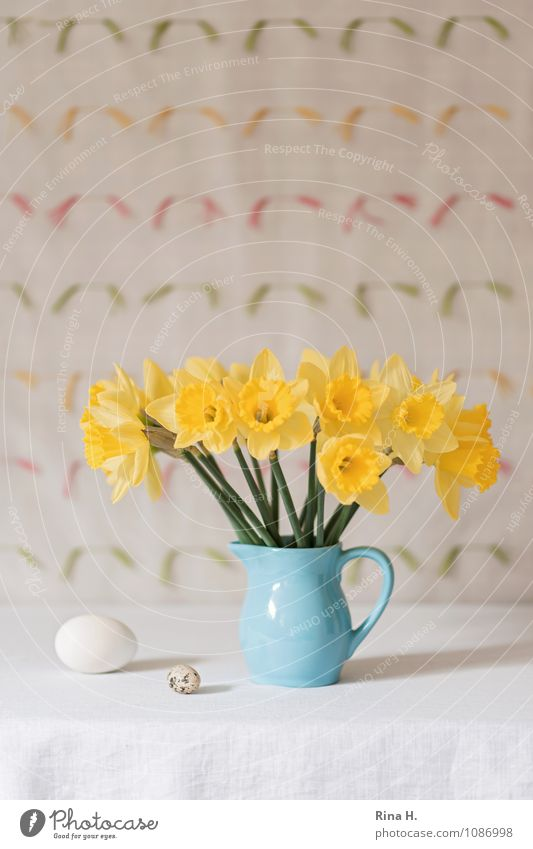 No. IV Lifestyle Easter Flower Blossoming Illuminate Bright Blue Yellow Joie de vivre (Vitality) Spring fever Still Life Vase Tablecloth Narcissus Egg