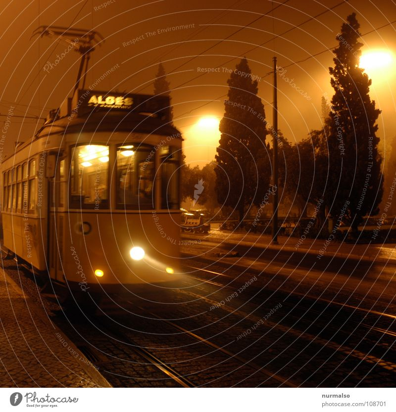 Autumn Movement Fear Fog Railroad tracks Creepy London Eerie Tram Portugal Lisbon Electric England Narrow-gauge railroad