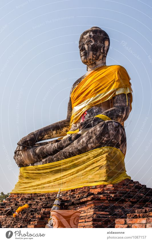 Buddha Art Exhibition Sculpture Culture Subculture Relaxation Sit Colour photo Exterior shot Deserted Day Light Sunlight