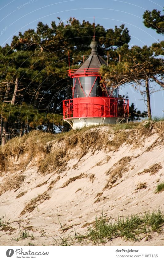 Nature Vacation & Travel Plant Landscape Far-off places Beach Environment Spring Coast Freedom Tourism Waves Island To enjoy Trip Beautiful weather