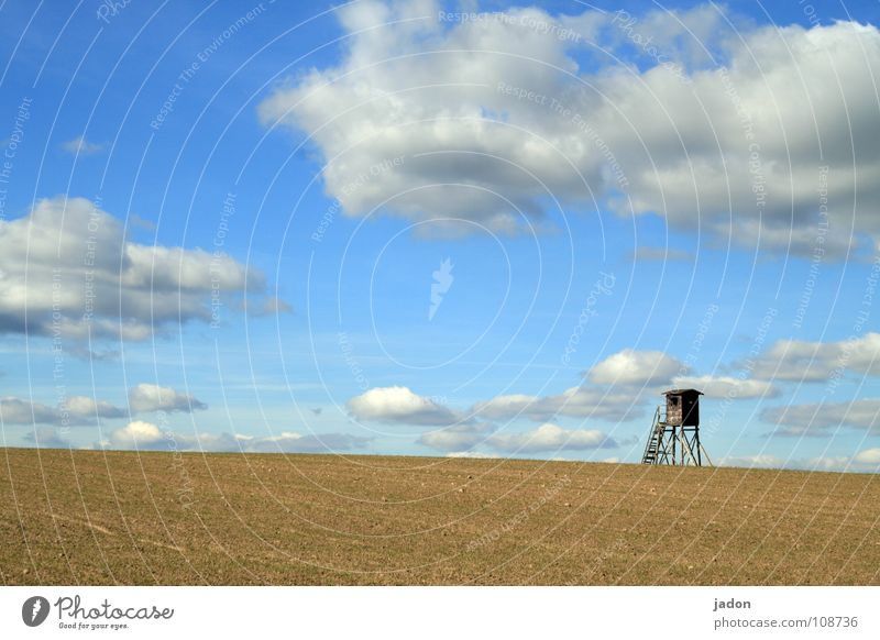 Tower f8 Hunting Blind Meadow Field Clouds Loneliness White Horizon Brandenburg Calm Background picture Flat (apartment) Sky Ladder Blue windows Landscape