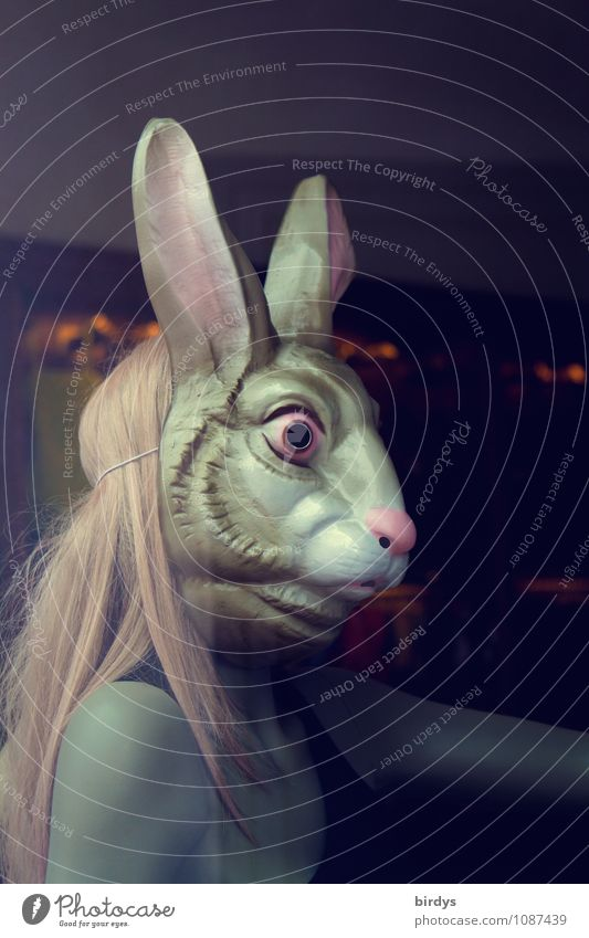 Easter bunny Feminine Young woman Youth (Young adults) 1 Human being 18 - 30 years Adults Blonde Long-haired Mask Hare ears Looking Esthetic Exceptional