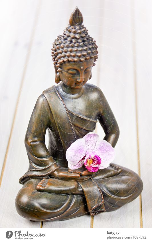 Relaxation Calm Face Religion and faith Art Power Gold Force Culture Asia Belief Well-being Harmonious Meditation Statue Figure