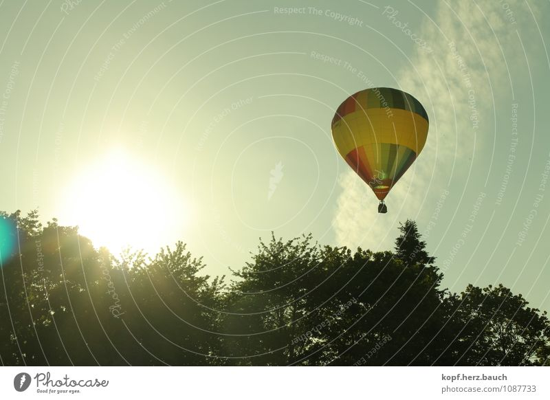 Journey to the sun Trip Adventure Summer Nature Sunlight Beautiful weather Means of transport Hot Air Balloon Movement Relaxation Fantastic Tall Natural