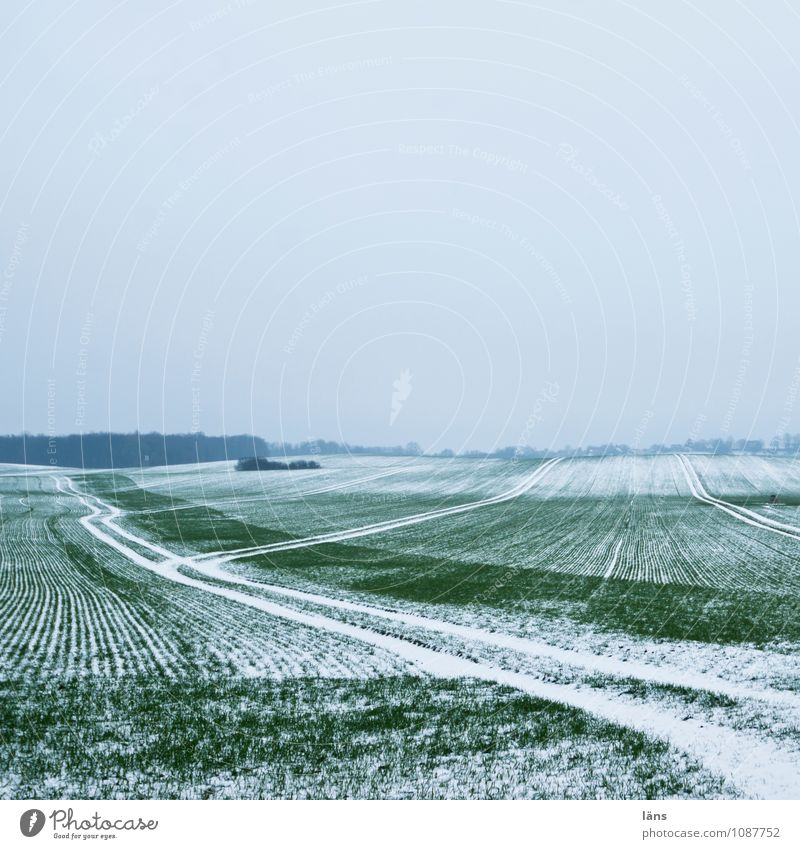 the winter goes Winter Snow Agriculture Sky Frost Cold