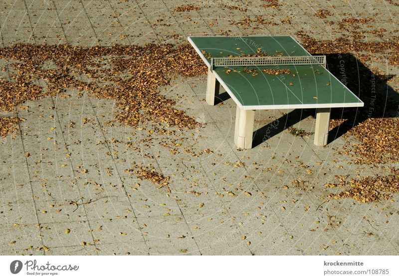 Autumn lies over the land Leaf Autumnal weather Playing Seasons Paving tiles Autumn leaves Deserted Gray table tennis Ping Pong Table Loneliness Net Shadow