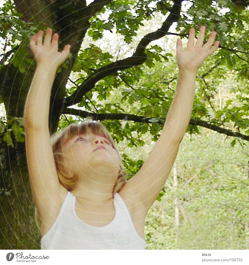 Funny, funny, cheerful, happy, funny blonde girl outside in the garden, looks up and stretches both arms up to the tree. Little joker is making nonsense, fun with raised hands in nature, in the park under the tree.