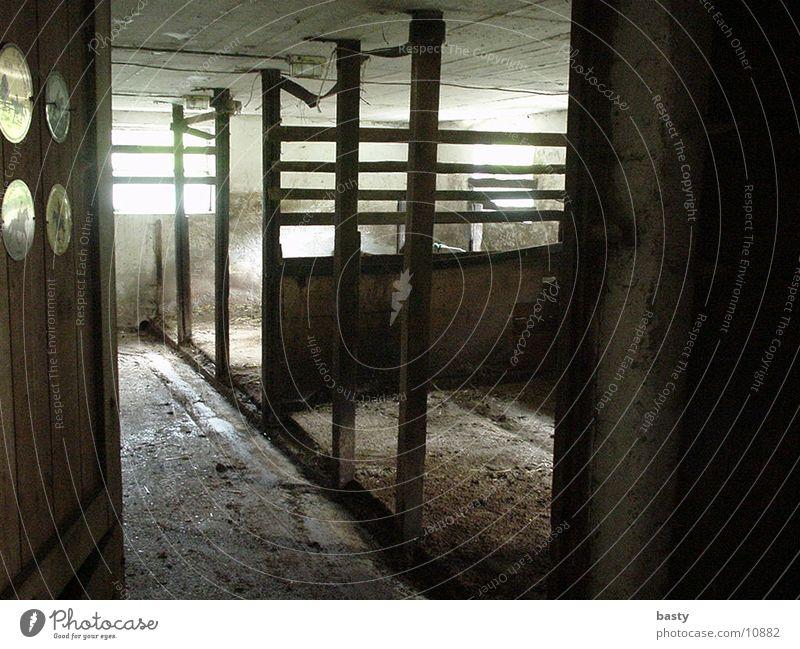 stable Barn Empty Straw Historic Shadow/Light
