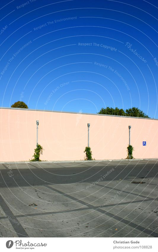 Parking situation1 Parking lot Supermarket Tree Wall (building) Pink Green Gray Ventilation Sunday Closing time Closed Concrete Asphalt Architecture Things Sky