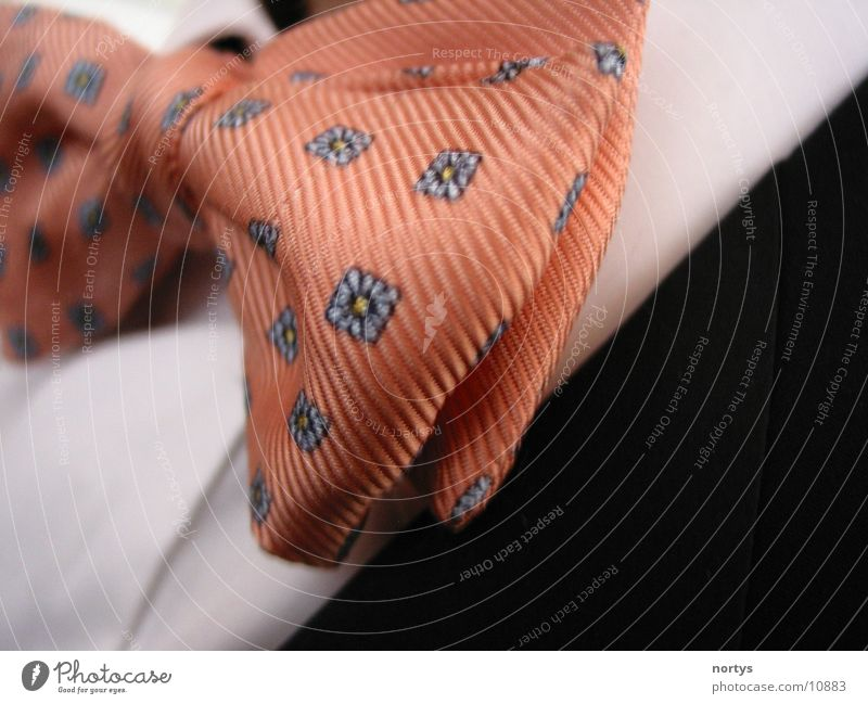 Make the bow tie Tie Salmon Pink Suit Occasion Macro (Extreme close-up) Close-up Elegant Work and employment Feasts & Celebrations Noble Bow tie