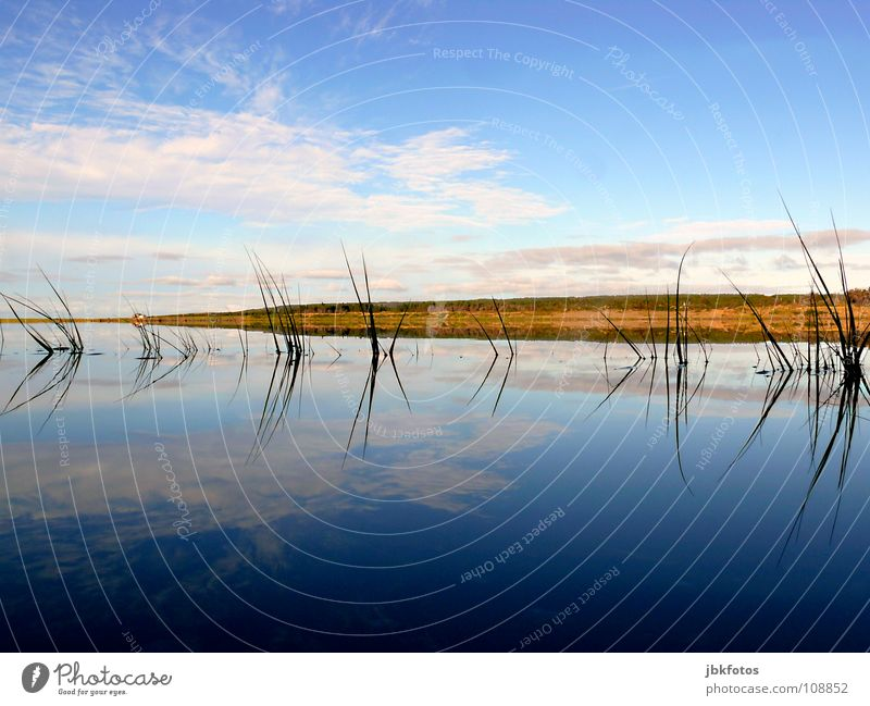 ~~? Mirroring ? Highlands Canada Nova Scotia Autumn Indian Summer Colour Dye Landscape Reflection Water Atlantic Ocean Blue White Green Red Clouds Grass