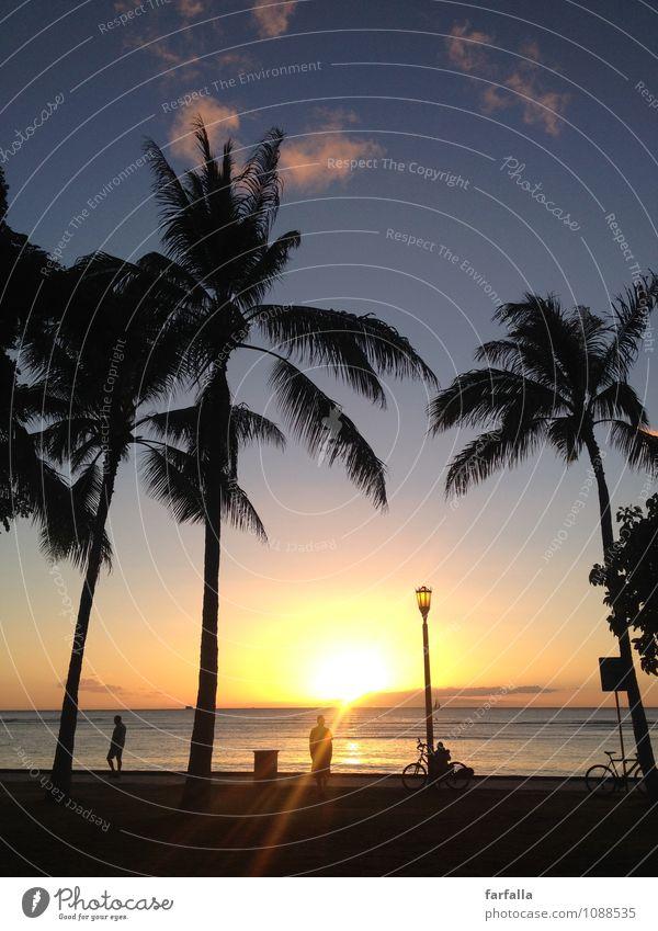 When The Sun Goes Down... Nature Plant Sand Water Sky Horizon Summer Coast Ocean Americas Emotions Happy Contentment Joie de vivre (Vitality) Power Romance