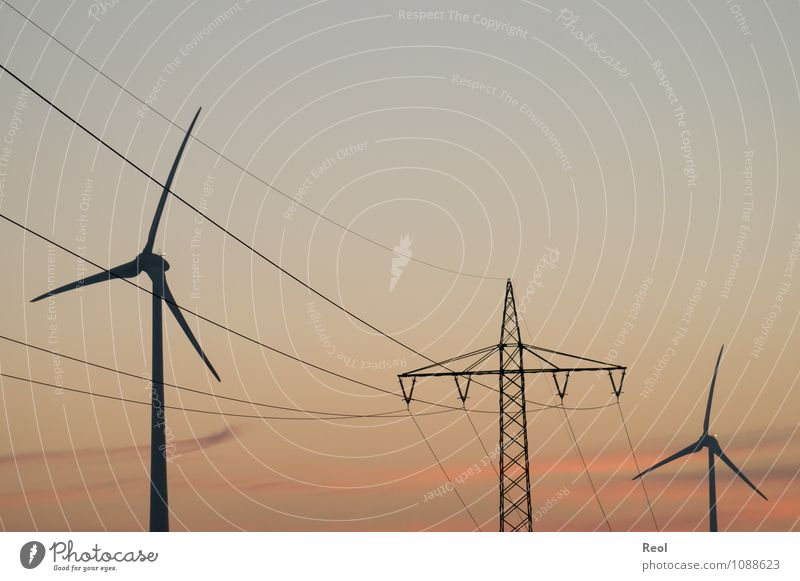 Green Red Energy industry Orange Wind Energy Electricity Beautiful weather Wind energy plant Dusk Steel cable Electricity pylon Climate change High voltage power line Pinwheel Electricity generating station