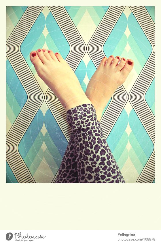 fetish Toes Nail Panther Retro Wallpaper Seventies Red Varnished Woman Calf Feet Legs Skin Blue Barefoot