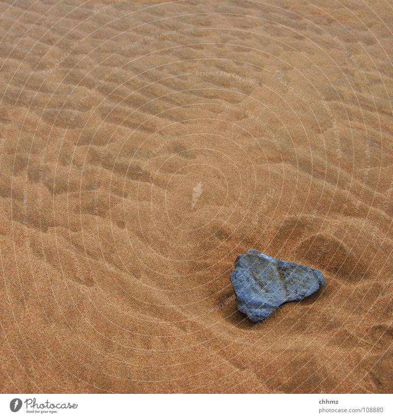 Ocean Beach Stone Sand Waves Coast Soft Go under Hard High tide Tide Low tide