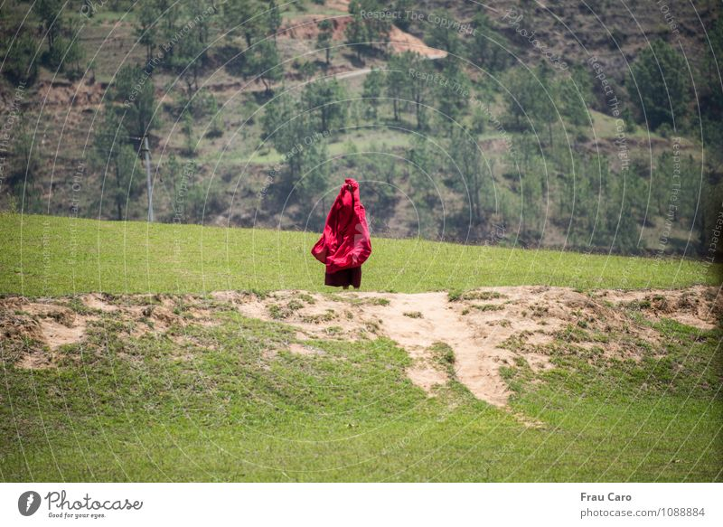 Monk in the wind Human being Masculine Man Adults 1 30 - 45 years Nature Landscape Earth Spring Beautiful weather Wind Tree Grass Meadow Field Hill Clothing