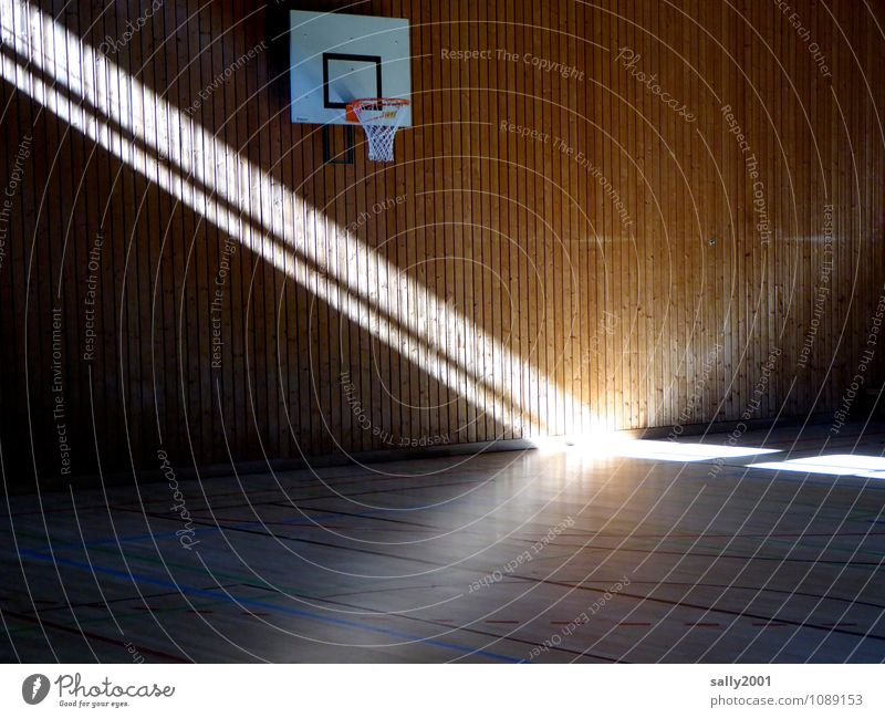 Spot on Sport... Sports Fitness Sports Training Basketball basket Sporting Complex Gymnasium Illuminate Exceptional Fantastic Bright Effort Hope Stage lighting