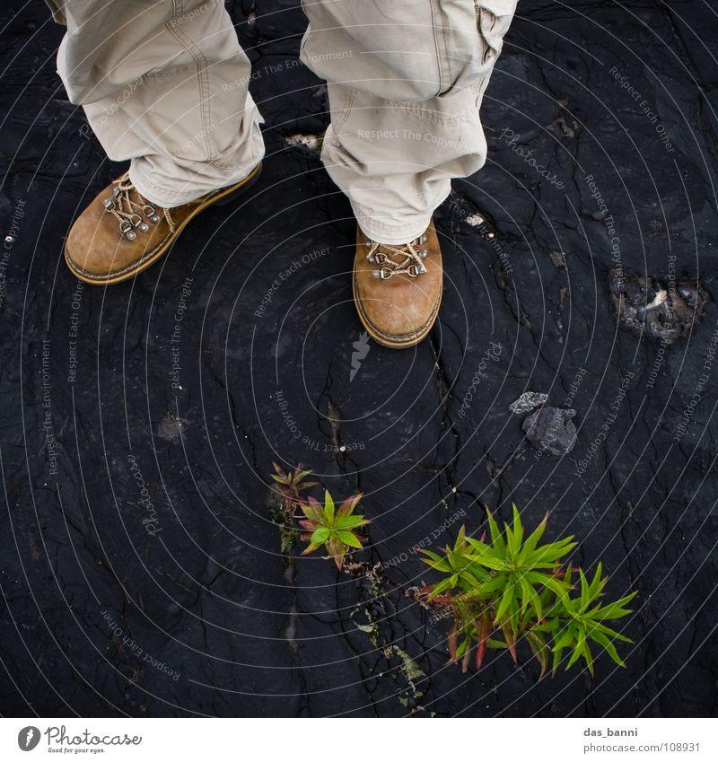 Plant Discover Boots Botany Expedition Safari Trouser leg Botanist Dark background