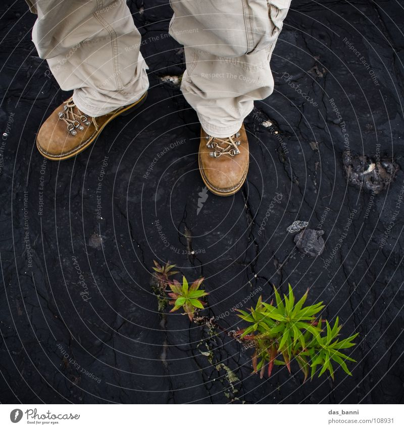[SAFARI] - FLAT FOOT Safari Discover Expedition Trouser leg Boots Bird's-eye view Plant Dark background Botany Botanist