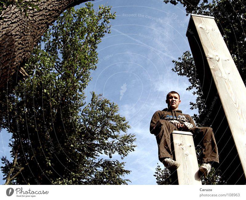 Youth (Young adults) Blue Beautiful Tree Leaf Above Wood Brown Sit Wait Tall Break Under Tree trunk Boredom Frankfurt