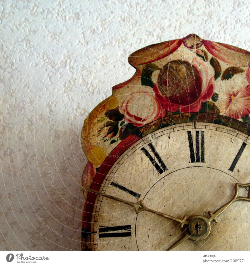 Old Flower Wall (building) Wood Time Walking Clock Round Digits and numbers Lawn Painting (action, work) Clock face Analog Craft (trade) Hang Ancient
