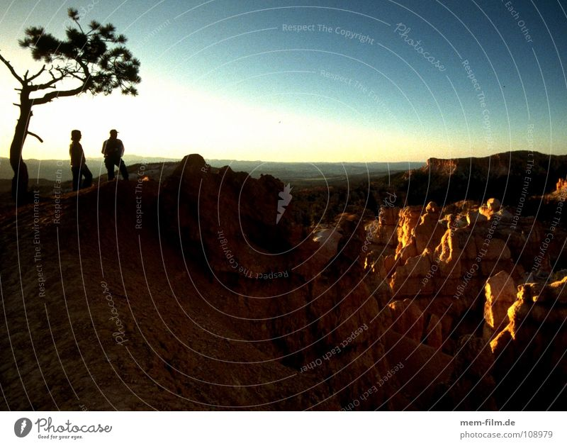 Sky Tree Clouds USA Desert Thin Branch Dusk Canyon Cowboy National Park Western Wilderness Brand of cigarettes Nature reserve Sandstone