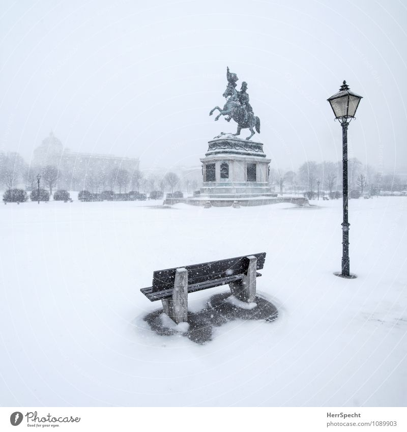 White Loneliness Winter Environment Snow Gray Snowfall Wind Esthetic Empty Places Elements Street lighting Monument Storm Capital city