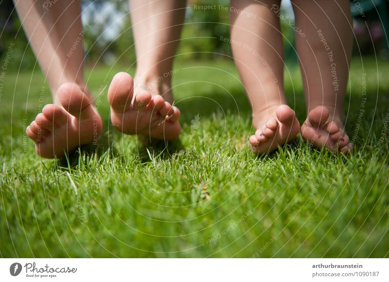 Feet barefoot in the meadow Lifestyle Pedicure Healthy Leisure and hobbies Freedom Summer Sun Garden Parenting Child Human being Masculine Feminine Young woman