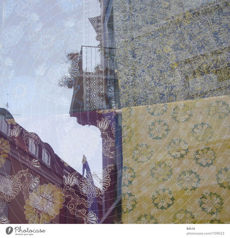 Old Flower City House (Residential Structure) Yellow Street Above Dream Brown Tall Authentic Violet Desire Mirror Obscure Historic