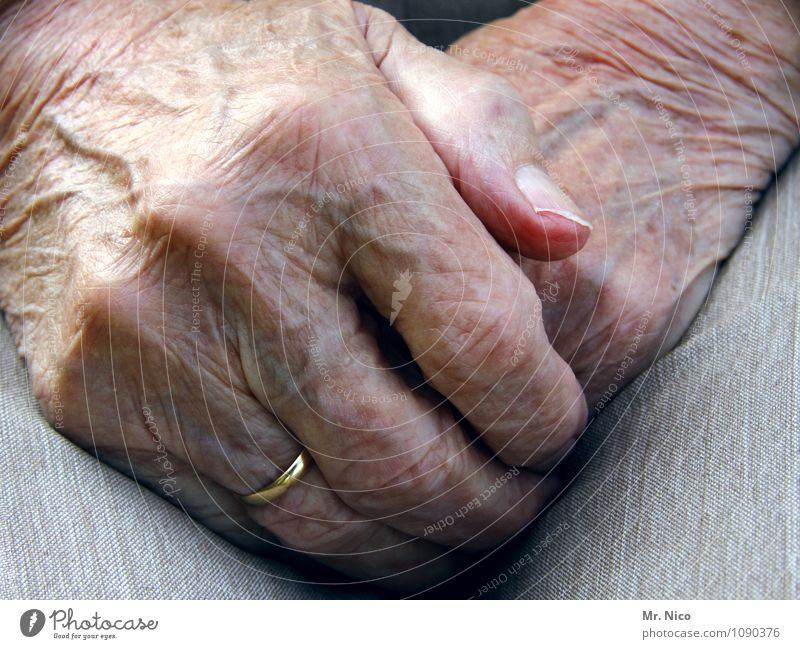 Old Loneliness Hand Calm Life Senior citizen Feminine Contentment 60 years and older Skin Fingers Grief Wrinkle Pants Ring Grandmother