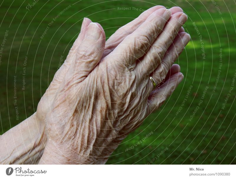 Loneliness Hand Calm Environment Life Emotions Senior citizen Feminine 60 years and older Arm Skin Fingers Grief Wrinkle Belief Trust