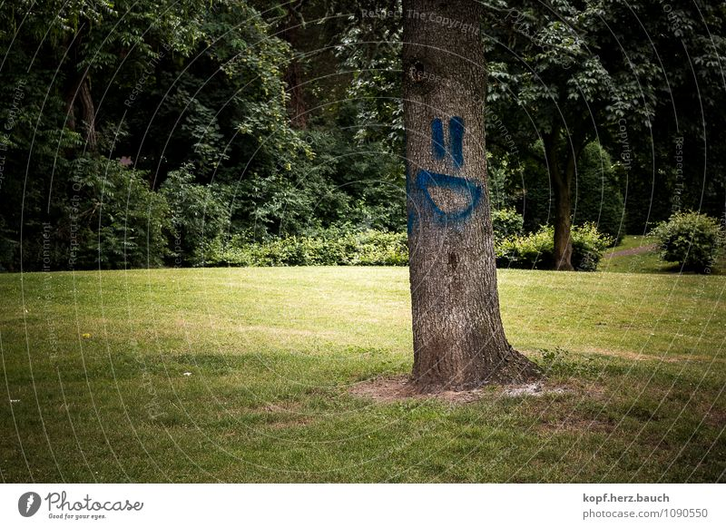 Tree with humor Forest Sign Graffiti Positive Spring fever Happy Joie de vivre (Vitality) Optimism Laughter Smiley Funny Green Congenial April Deserted